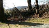 Randonnée Marche PAU - PAU  parc du chateau - Photo 4