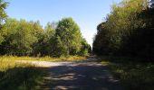 Trail Walk DAMPLEUX - en forêt de Retz_80_sur la Route Tortue et la Route Droite - Photo 273