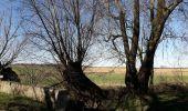 Trail Walk Walcourt - clermont adeps - Photo 1