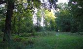 Trail Walk DAMPLEUX - en forêt de Retz_80_sur la Route Tortue et la Route Droite - Photo 69