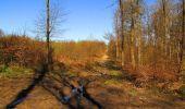 Randonnée A pied VILLERS-COTTERETS - le GR11A  dans la Forêt de Retz  - Photo 58