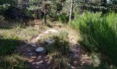 Trail Electric bike SAINT-ETIENNE-DU-VALDONNEZ - les laubies à st etienne du valdonnez - Photo 3