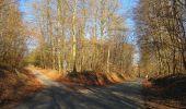 Trail Walk PIERREFONDS - en forêt de Compiègne_24_Tournantes sur le Voliard et sur la Fortelle_chaussée Brunehaut - Photo 70