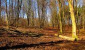 Randonnée A pied VILLERS-COTTERETS - le GR11A  dans la Forêt de Retz  - Photo 99