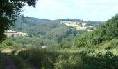 Randonnée Marche Wellin - RB-Lu-25_Au pays de Wellin-porte de l'Ardenne - Photo 1
