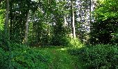 Randonnée Marche HARAMONT - en forêt de Retz_79_08_2019_vers Taillefontaine et Retheuil par les lisières - Photo 52