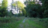 Trail Walk DAMPLEUX - en forêt de Retz_80_sur la Route Tortue et la Route Droite - Photo 67
