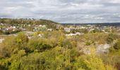 Trail Walk Viroinval - De Nismes à Petigny par le Tienne du Lion - Photo 7