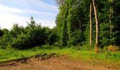 Randonnée Marche COYOLLES - en forêt de Retz_78_les rayons du Rond Capitaine - Photo 92