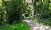 Randonnée Marche HARAMONT - en forêt de Retz_79_08_2019_vers Taillefontaine et Retheuil par les lisières - Photo 55