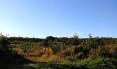 Trail Walk DAMPLEUX - en forêt de Retz_80_sur la Route Tortue et la Route Droite - Photo 81