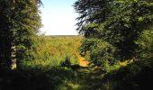 Trail Walk DAMPLEUX - en forêt de Retz_80_sur la Route Tortue et la Route Droite - Photo 10