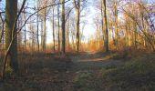 Trail Walk SAINT-JEAN-AUX-BOIS - en forêt de Compiègne_33_12_2019_les Tournantes de l'étang Saint-Jean et des Prés Saint-Jean - Photo 70