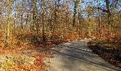 Trail On foot VIEUX-MOULIN - en forêt de Compiègne_23_la Grotte des Ramoneurs_le Mont Berny - Photo 84
