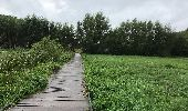 Trail Walk Gent - Drongen Gand 25 km - Photo 1