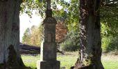 Trail Walk SCHIRMECK - Schirmeck - Photo 1
