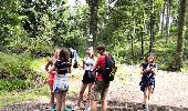 Trail Walk LA BRESSE - Lac de Lispach - Photo 5