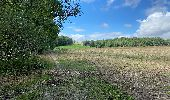 Randonnée Marche Profondeville - Sept Meuse Profondeville  21,4 km - Photo 7