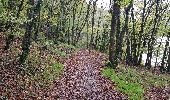 Trail Walk SAINT-PLANTAIRE - le rocher de la fileuse - Photo 5