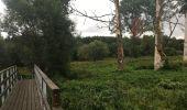 Randonnée Marche Sainte-Ode - Transardenaise étape 2 - Photo 4