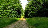 Randonnée Marche COYOLLES - en forêt de Retz_78_les rayons du Rond Capitaine - Photo 103