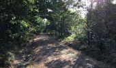 Randonnée Trail NEANT-SUR-YVEL - Autour des étangs à partir du gîte de tante Phonsine - Photo 14