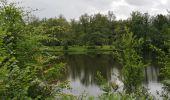 Trail Walk ECROMAGNY - Milles Étangs 18.06.2020 - Photo 12