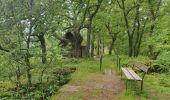 Trail Walk ERNOLSHEIM-LES-SAVERNE - 2019-05-30 Marche Mt St Michel Ernolsheim les Saverne Reel - Photo 5
