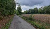 Trail Walk Andenne - sclaigneaux 1 - Photo 3