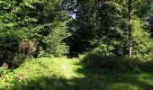 Trail Walk DAMPLEUX - en forêt de Retz_80_sur la Route Tortue et la Route Droite - Photo 263