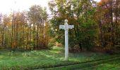 Randonnée Marche SAINT-JEAN-AUX-BOIS - en forêt de Compiègne_32_11_2019_les Tournantes de la Muette et sous la Tête Saint-Jean - Photo 139