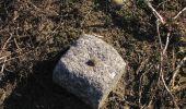 Trail On foot VIEUX-MOULIN - en forêt de Compiègne_23_la Grotte des Ramoneurs_le Mont Berny - Photo 62