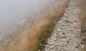 Trail Walk SAINT-MARTIN-VESUBIE - Saleze - lac Negre -pas de Prefounds - nuit refuge Questa - Photo 1