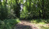 Randonnée Marche LACROIX-SAINT-OUEN - en forêt de Compiègne_35_la Croix Saint-Sauveur_le Ru du Goderu - Photo 8