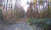 Trail Walk SAINT-JEAN-AUX-BOIS - en forêt de Compiègne_33_12_2019_les Tournantes de l'étang Saint-Jean et des Prés Saint-Jean - Photo 126