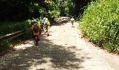 Trail Walk RIVIERE-SALEE - JOUBADIÈRE - MORNE CONSTANT - PAGERIE - Photo 3