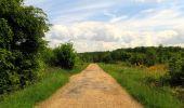 Randonnée Marche COYOLLES - en forêt de Retz_78_les rayons du Rond Capitaine - Photo 152