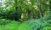 Randonnée Marche HARAMONT - en forêt de Retz_79_08_2019_vers Taillefontaine et Retheuil par les lisières - Photo 51