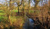 Randonnée A pied VILLERS-COTTERETS - le GR11A  dans la Forêt de Retz  - Photo 135