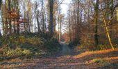 Trail Walk SAINT-JEAN-AUX-BOIS - en forêt de Compiègne_33_12_2019_les Tournantes de l'étang Saint-Jean et des Prés Saint-Jean - Photo 104