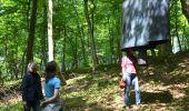 Randonnée Marche Ohey - Sentiers d'Art 2019 / Havelange - Somme-Leuze - Photo 12