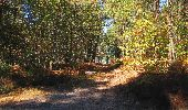 Trail Walk LONGPONT - en forêt de Retz_29_Longpont_la cave du Diable_A - Photo 34