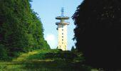 Randonnée A pied VILLERS-COTTERETS - le GR11A  dans la Forêt de Retz  - Photo 39