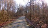 Trail On foot VIEUX-MOULIN - en forêt de Compiègne_23_la Grotte des Ramoneurs_le Mont Berny - Photo 81