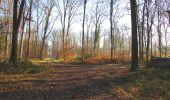 Trail Walk SAINT-JEAN-AUX-BOIS - en forêt de Compiègne_33_12_2019_les Tournantes de l'étang Saint-Jean et des Prés Saint-Jean - Photo 64