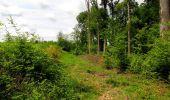 Randonnée Marche COYOLLES - en forêt de Retz_78_les rayons du Rond Capitaine - Photo 138