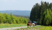 Trail Equestrian Saint-Hubert - Chevauchée forestière - Photo 1