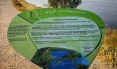Trail Walk PEYRIAC-DE-MER - Peyriac et le tour de l'étang  - Photo 4