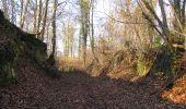 Trail On foot VIEUX-MOULIN - en forêt de Compiègne_23_la Grotte des Ramoneurs_le Mont Berny - Photo 56