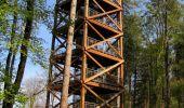 Randonnée A pied VILLERS-COTTERETS - le GR11A  dans la Forêt de Retz  - Photo 75